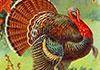 Old Tyme Thanksgiving